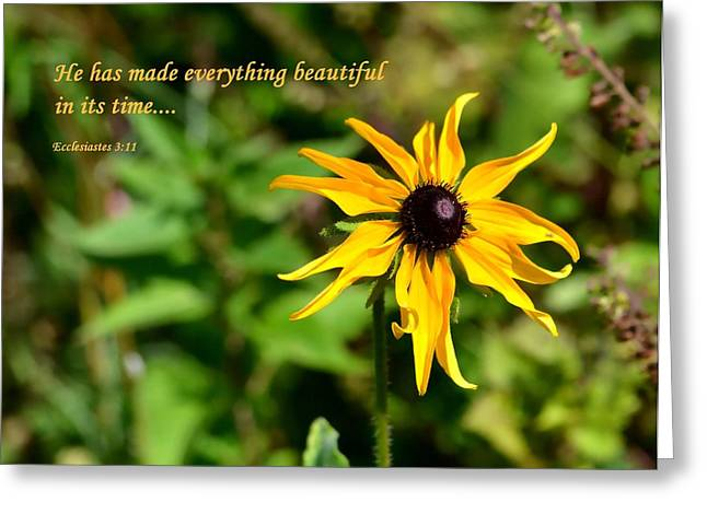 Testament Greeting Cards - Everything Beautiful Greeting Card by Deena Stoddard