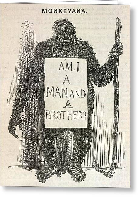 Anti-slavery Photographs Greeting Cards - Evolution Satire monkeyana, 1861 Greeting Card by British Library