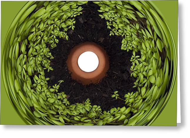 Compost Greeting Cards - Excellent Drainage Greeting Card by Anne Gilbert