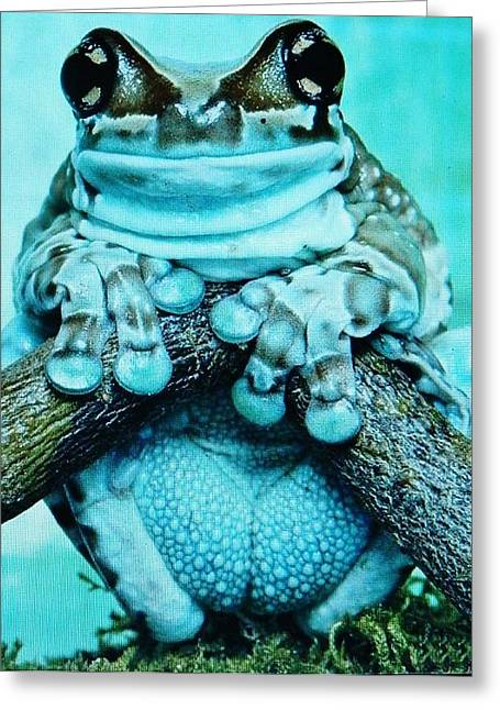 Origional Greeting Cards - Excotic Frogs    26 Greeting Card by Gunter  Hortz