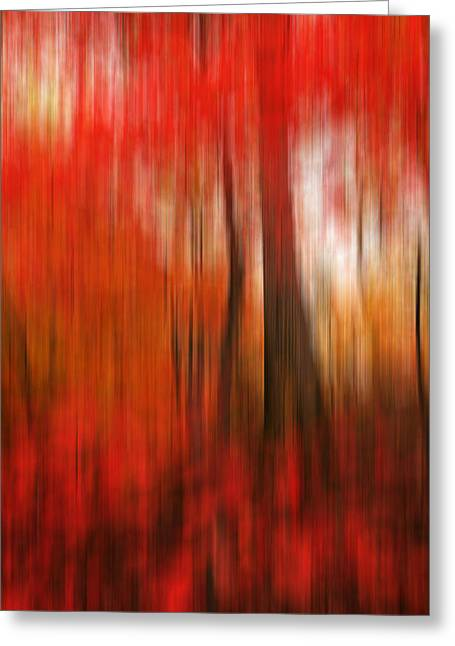 Rotation Photographs Greeting Cards - Existing Red Greeting Card by Lourry Legarde