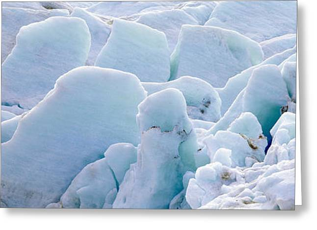 Exit Glacier At Harding Ice Field Greeting Card by Panoramic Images