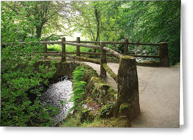 Case Pyrography Greeting Cards - Exmoor Footbridge Greeting Card by Philip Francis