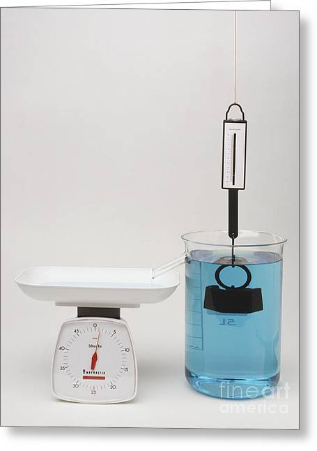 Immersed Greeting Cards - Experiment, Newton Meter Greeting Card by Andy Crawford / Dorling Kindersley