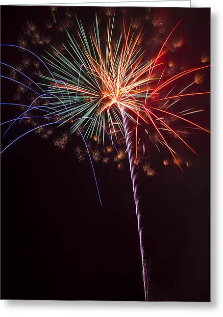 Pyrotechnics Greeting Cards - Exploding Colors Greeting Card by Garry Gay
