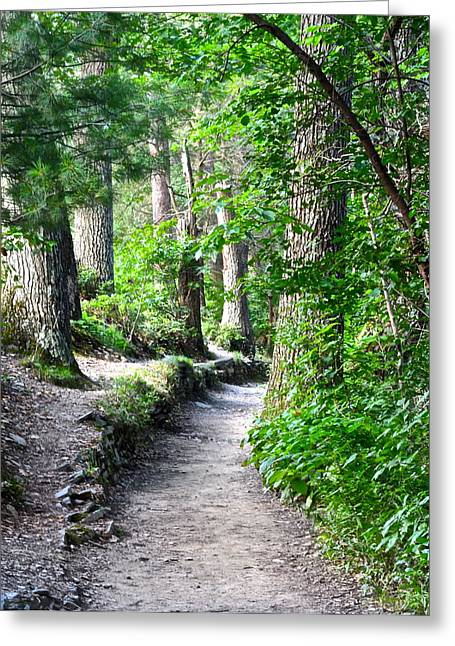 Terrific Greeting Cards - Exploration Trail Greeting Card by Frozen in Time Fine Art Photography