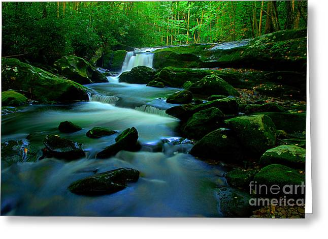 Flowing Stream Greeting Cards - Exploring The Smokies Greeting Card by Michael Eingle