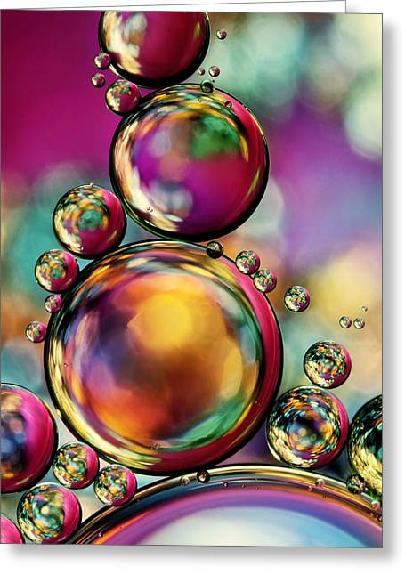 Sharon Johnstone Greeting Cards - Explosion of Colour Greeting Card by Sharon Johnstone