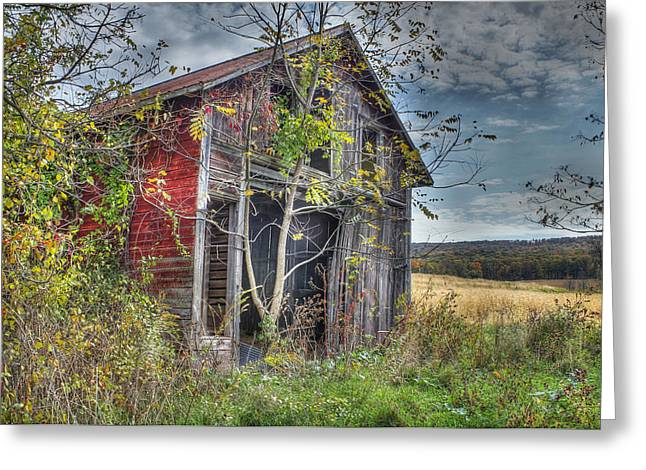 Sheds Digital Art Greeting Cards - Extra Storage Greeting Card by Sharon Batdorf