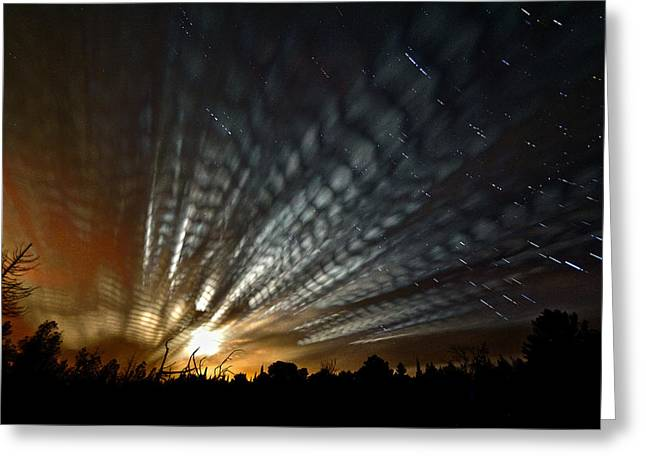 Extraterrestrial Spider Web Greeting Card by Matt Molloy