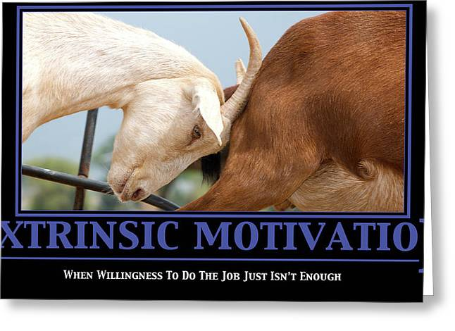 Work Place Greeting Cards - Extrinsic Motivation De-Motivational Poster Greeting Card by Lisa Knechtel