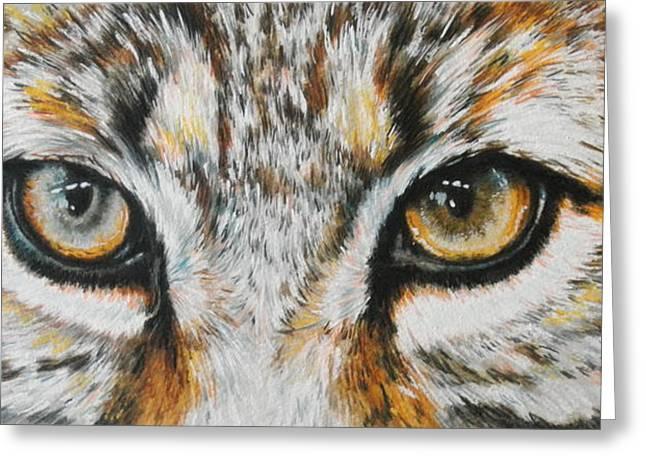 Bobcat Greeting Cards - Eye-catching Bobcat Greeting Card by Barbara Keith