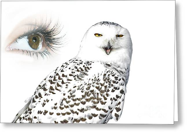 Eye Of Purity And The Mysterious Snowy Owl  Greeting Card by Inspired Nature Photography Fine Art Photography
