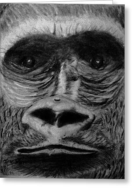 Gorilla Drawings Greeting Cards - Eye of the Beholder Greeting Card by Irving Starr