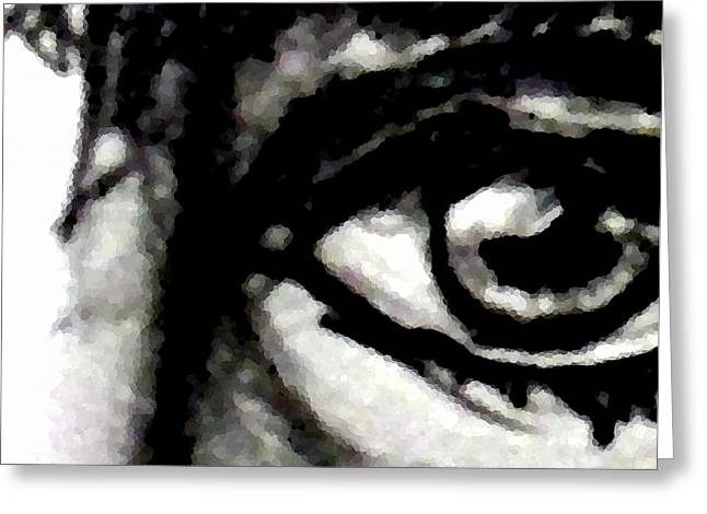 Eyebrow Greeting Cards - Eye of the soul Greeting Card by Marcello Cicchini