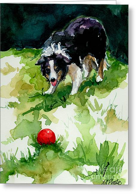 Herding Dogs Greeting Cards - Eye on tthe Ball Greeting Card by Molly Poole