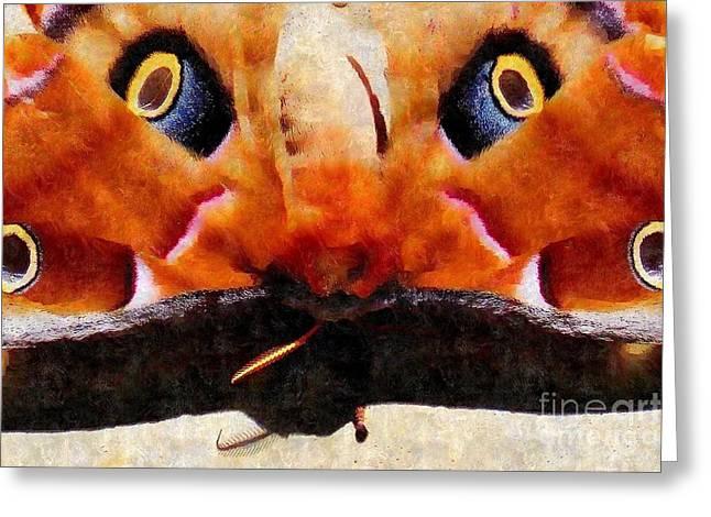 Greek Butterflies Greeting Cards - Eye on You - Silk Paint Greeting Card by Anita Faye