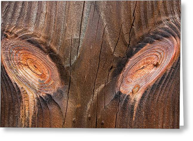 Cvnp Greeting Cards - Eye See You Greeting Card by Claus Siebenhaar