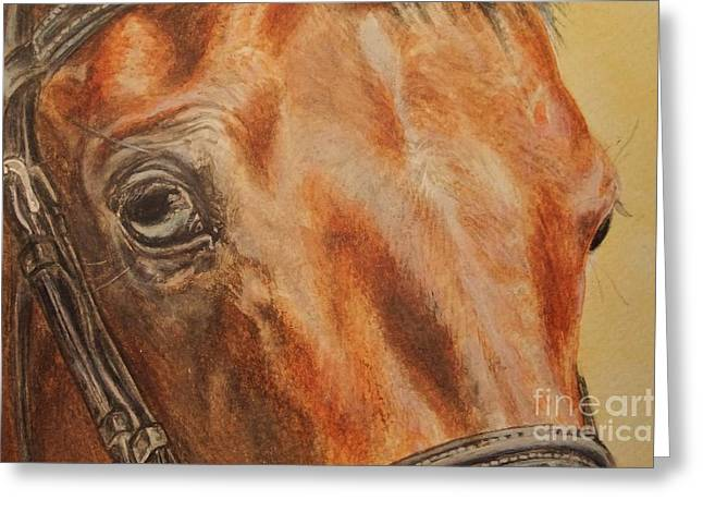 Horse Images Mixed Media Greeting Cards - Eyes Kiwi - a fragment of a portrait Greeting Card by Dorota Zdunska