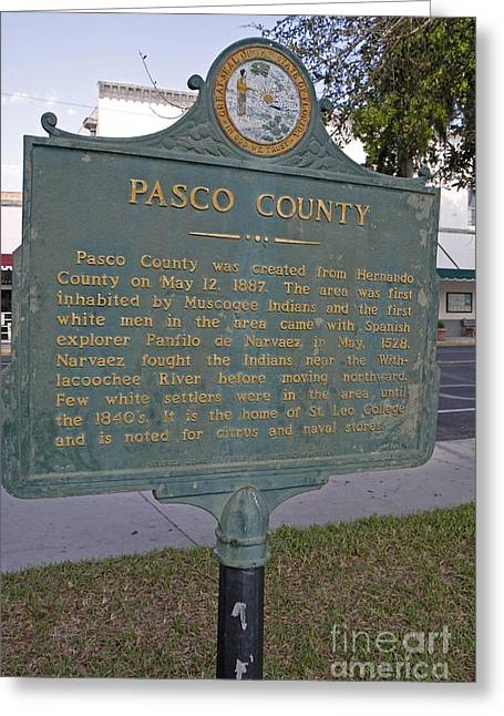 Pasco County Greeting Cards - F-56 Pasco County Greeting Card by Jason O Watson