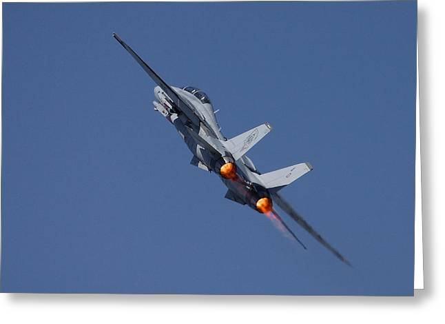 Fighter Aircraft Greeting Cards - F14 Tomcat - VF101 Grim Reapers Greeting Card by Pat Speirs