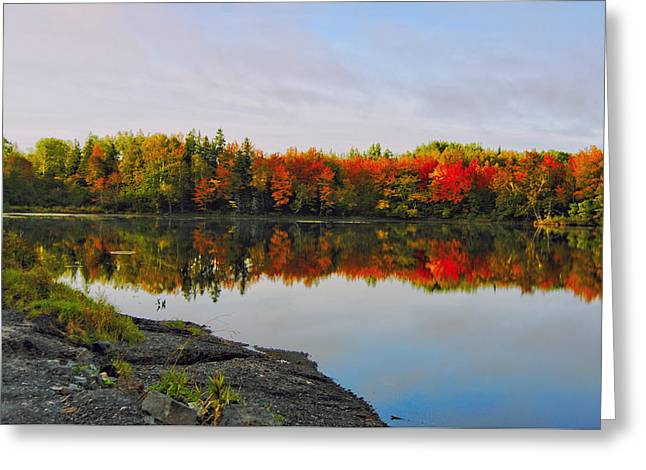 Reflection In Water Greeting Cards - Fabulous Fall Greeting Card by Kathleen Sartoris
