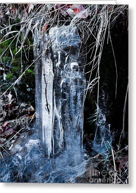 Wintrily Greeting Cards - Face In The Ice Greeting Card by Tom Gari Gallery-Three-Photography