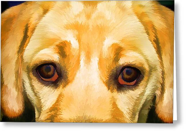 Family Member Greeting Cards - Face of Yellow Lab Greeting Card by David Letts