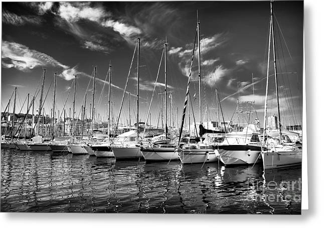 Docked Sailboats Photographs Greeting Cards - Facing North Greeting Card by John Rizzuto