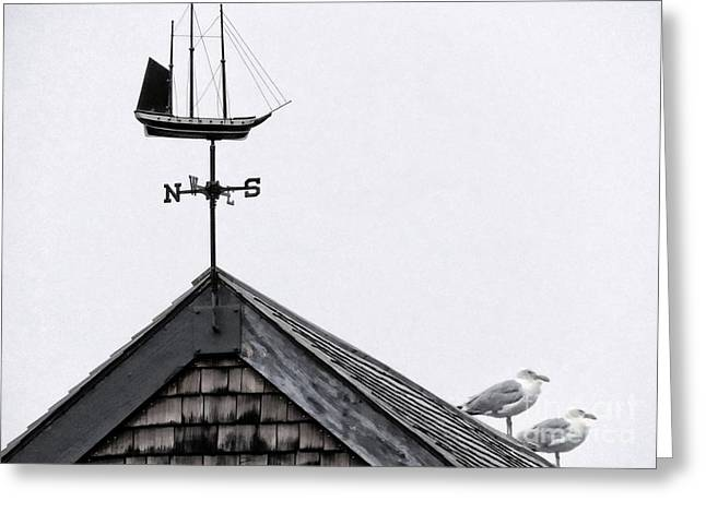 Weathervane Greeting Cards - Facing South Greeting Card by Marcia Lee Jones