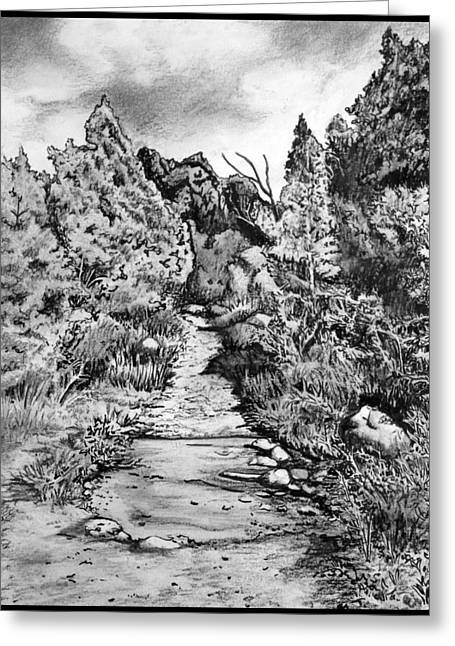 Hike Drawings Greeting Cards - Facing the Storm Greeting Card by Cheryl Marie