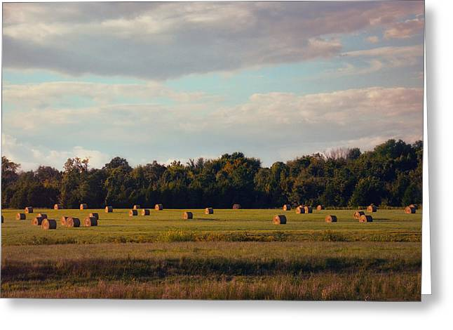 Tennessee Hay Bales Greeting Cards - Facing the Sun Greeting Card by Jai Johnson