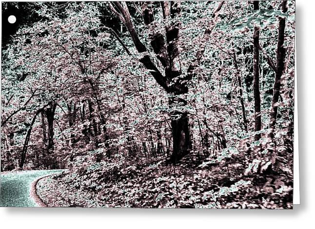Approach Digital Art Greeting Cards - Facing The Unknown Greeting Card by Will Borden