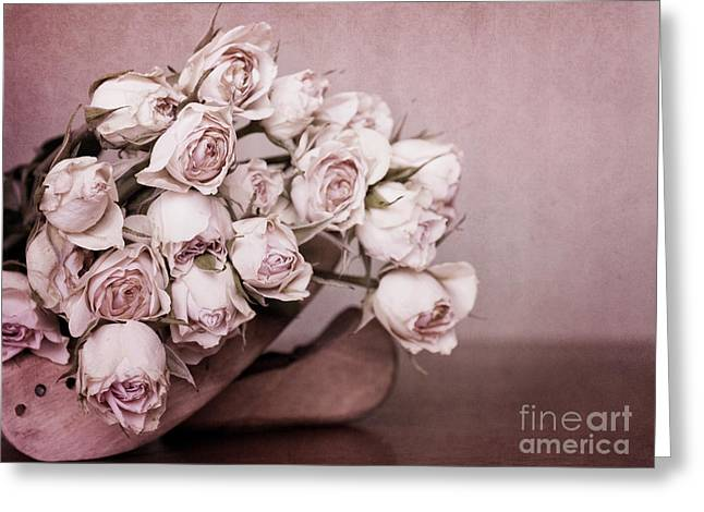 Pink Roses Greeting Cards - Fade Away Greeting Card by Priska Wettstein