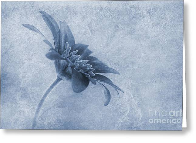 Purple Colored Greeting Cards - Faded beauty cyanotype Greeting Card by John Edwards