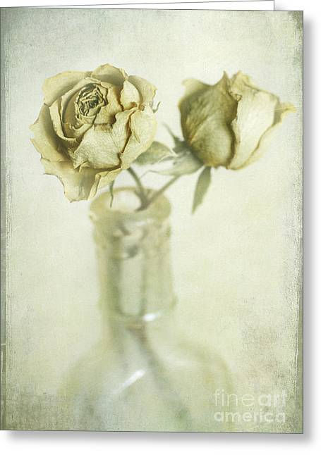 Medical Greeting Cards - Faded Dreams Greeting Card by Elena Nosyreva