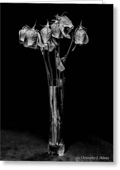 Faded Long Stems - Bw Greeting Card by Christopher Holmes