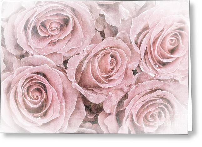 Faded roses Greeting Card by Jane Rix