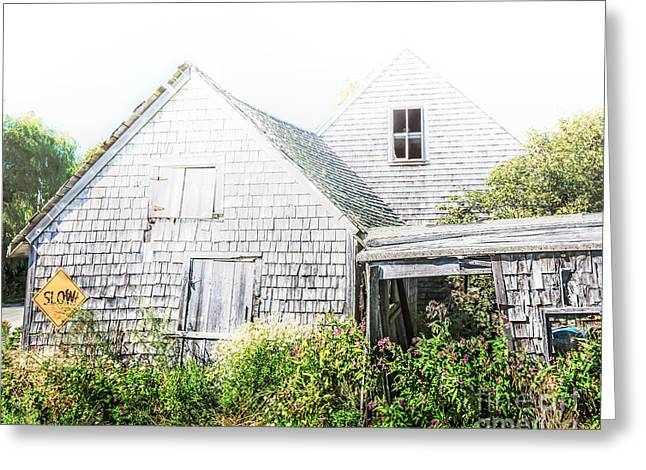 Mid-coast Maine Greeting Cards - Fading Away Greeting Card by Susan Cole Kelly Impressions