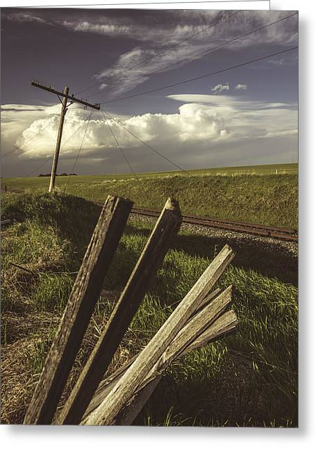 Fence Pole Greeting Cards - Fading Impressions 2 Greeting Card by Wayne Stadler