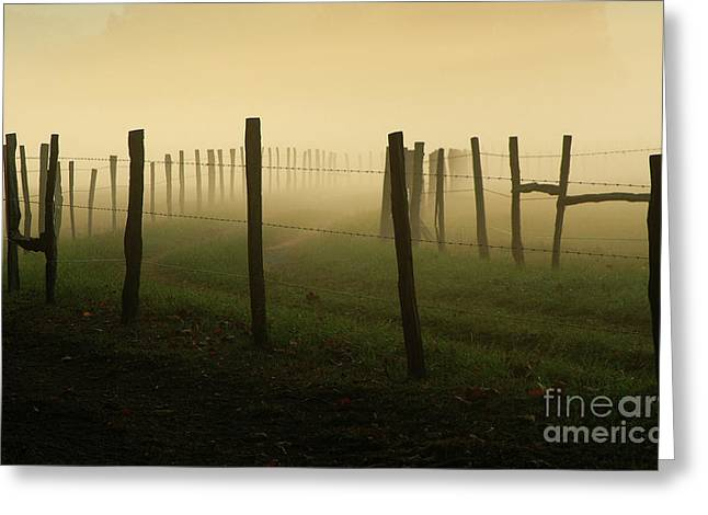 Douglas Stucky Greeting Cards - Fading Into The Fog Greeting Card by Douglas Stucky