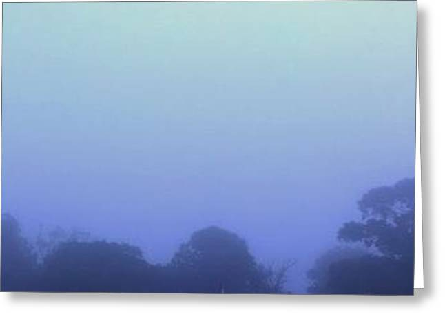Mystical Landscape Greeting Cards - Fading Light Greeting Card by Destynnie Hall
