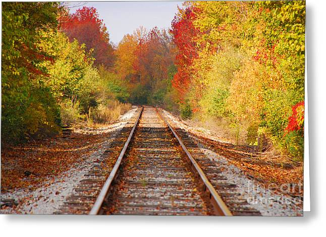 Indiana Autumn Greeting Cards - Fading Tracks Greeting Card by Mary Carol Story