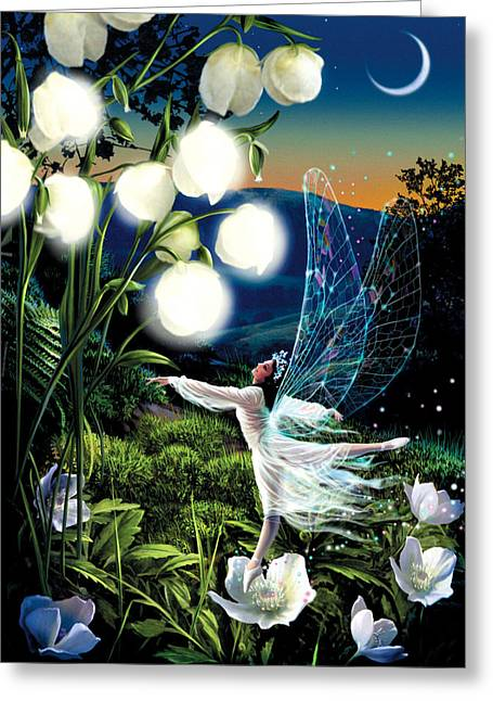 White Wing Greeting Cards - Fairy Dance Greeting Card by Garry Walton