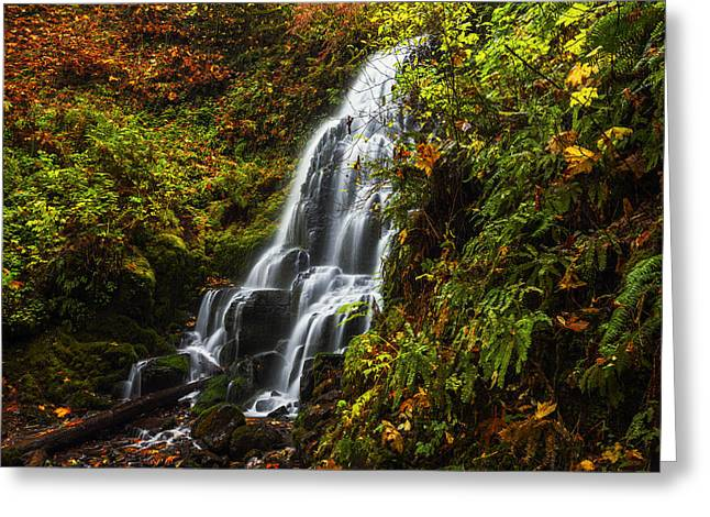 Fallen Leaf Greeting Cards - Fairy Falls Autumn in Columbia River Gorge Oregon USA Greeting Card by Vishwanath Bhat