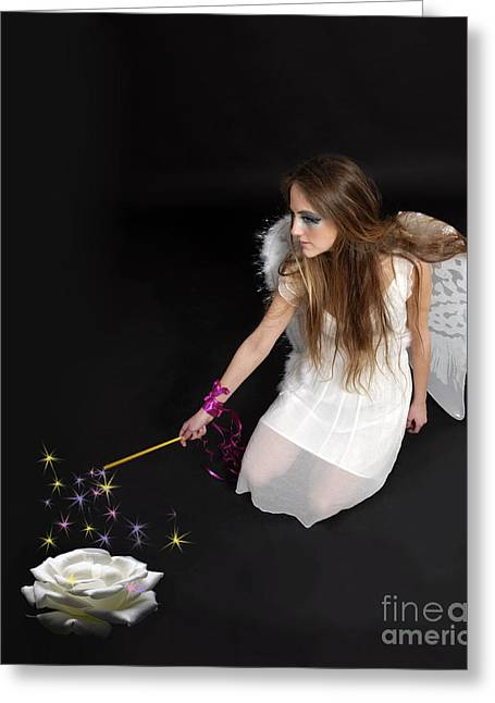 Pixy Greeting Cards - Fairy  Greeting Card by Ilan Rosen