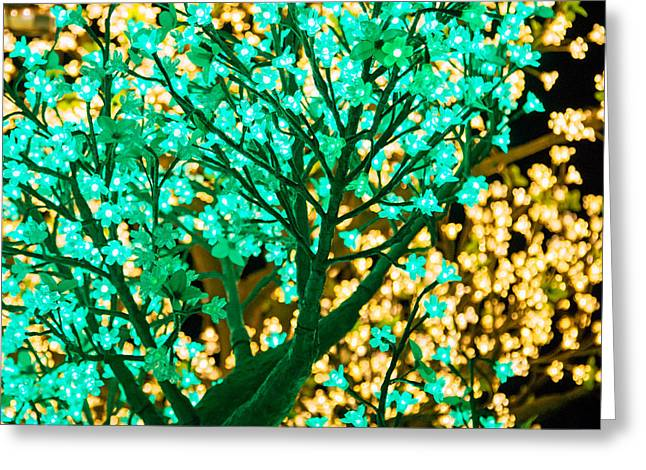 Coloured Greeting Cards - Fairy Tree Greeting Card by Nicholas Blackwell