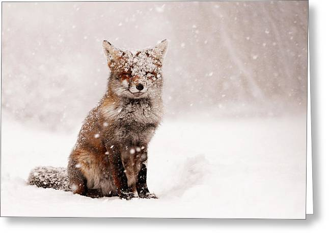 Red Art Greeting Cards - Fairytale Fox _ Red Fox in a Snow Storm Greeting Card by Roeselien Raimond