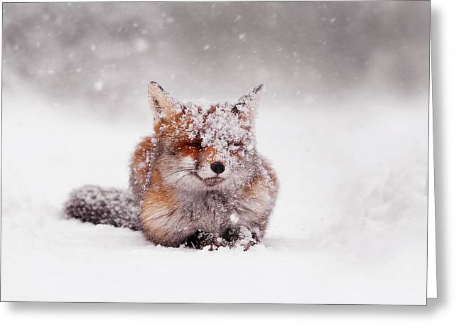 Red Eye Greeting Cards - Fairytale Fox II Greeting Card by Roeselien Raimond