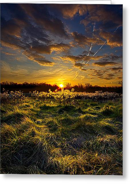 Geographic Greeting Cards - Fairytale Greeting Card by Phil Koch